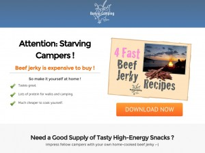 Landing page for beef jerky recipes.