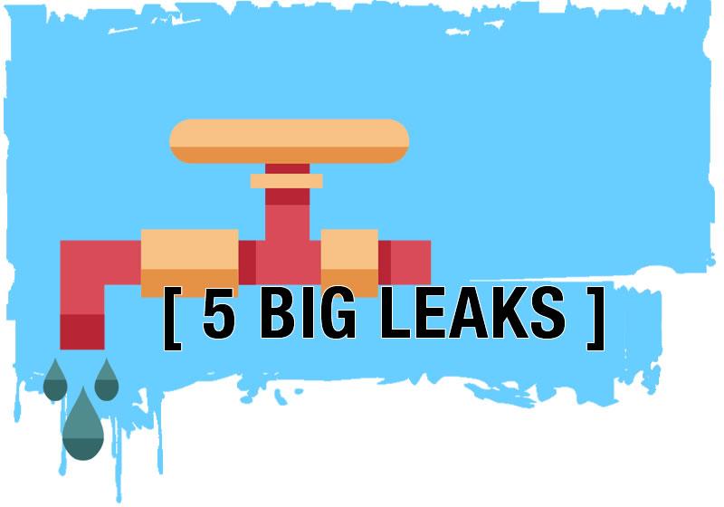 5 Big Leaks